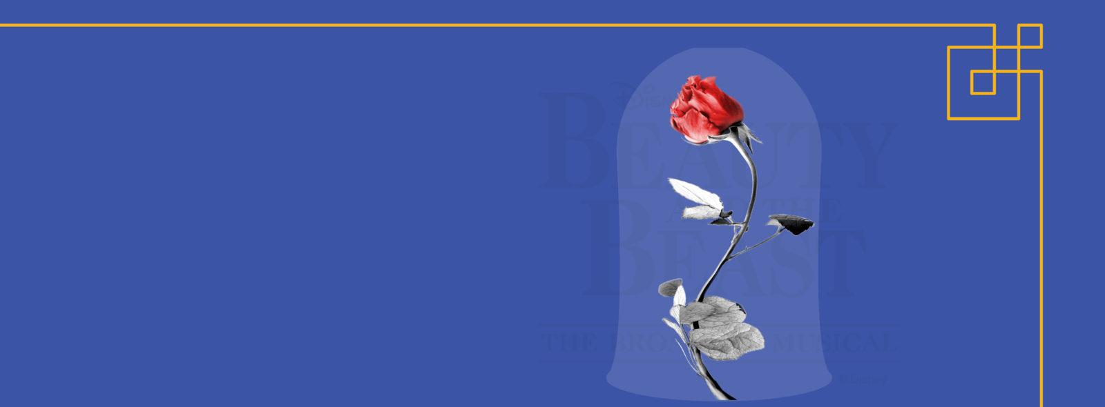 New Norshor Website Homepage Banner Beautyandthebeast Norshor Theatre